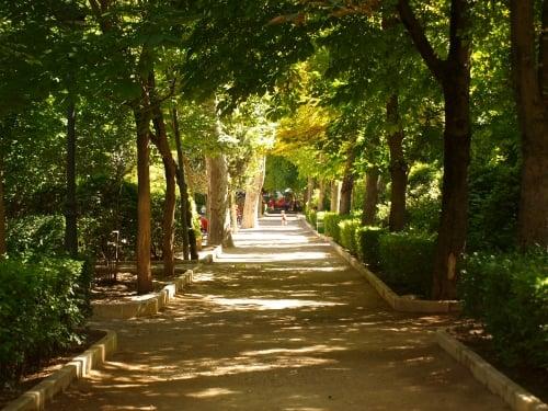 Parque San Julián 2