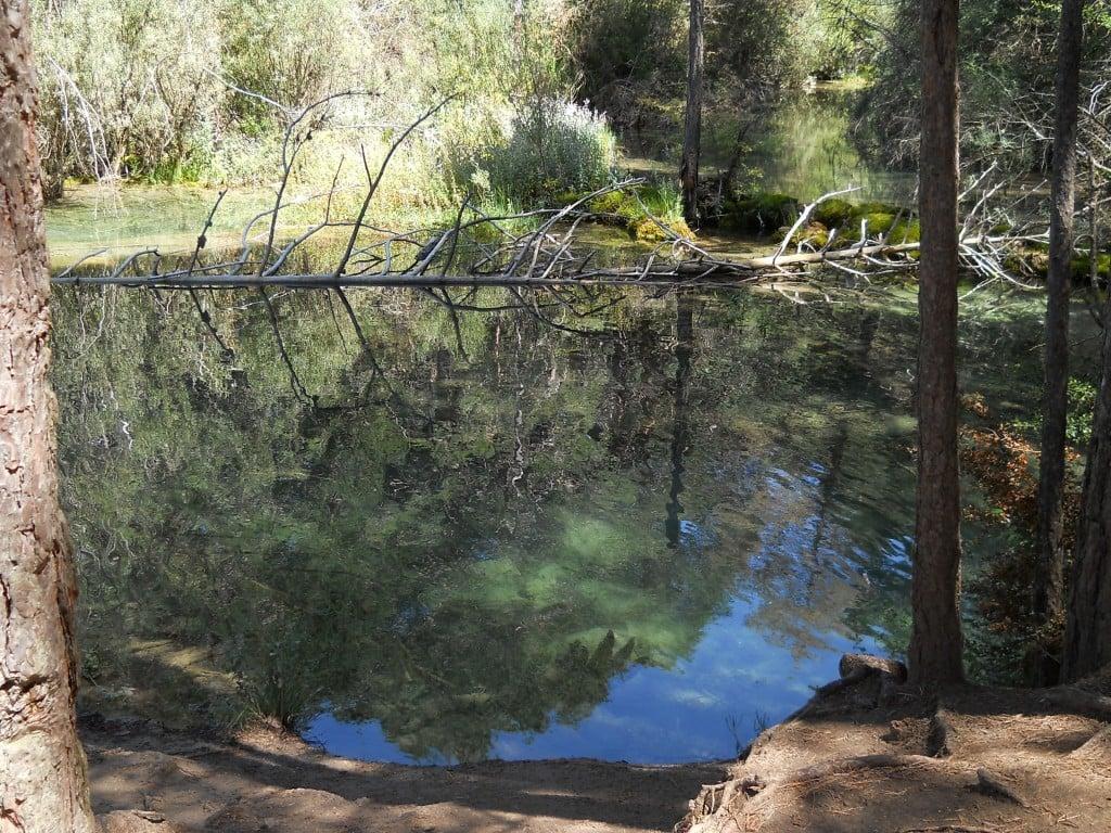 Nacimiento rio Cuervo